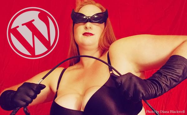 WordPressのセキュリティなイメージ